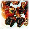 food-conch-dried.jpg (25089 bytes)