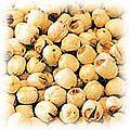 food-lotus-seed.jpg (22230 bytes)