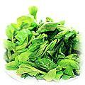 food-pea-sprout.jpg (18727 bytes)